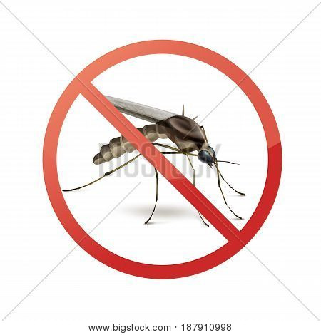 Stop prohibit sign on mosquito close up side view isolated on white background