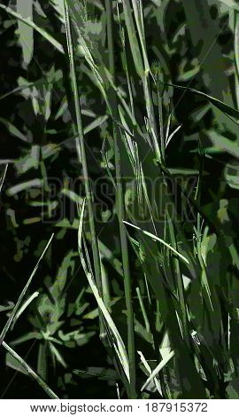 Abstract image of grass. Green background. Abstract green background. Grass. Green grass.
