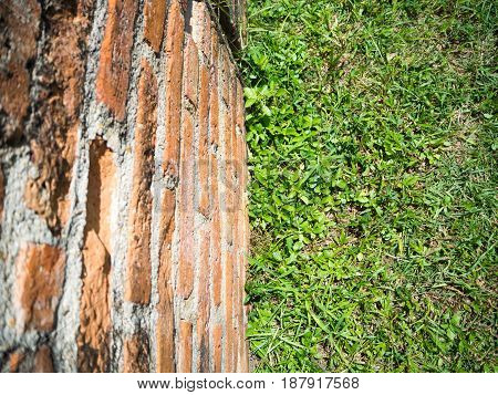 Green grass on the floor on the right. And reddish brown brick on the left.