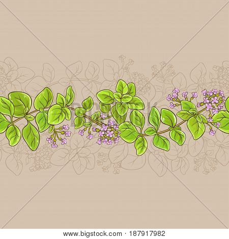 oregano branches vector pattern on color background