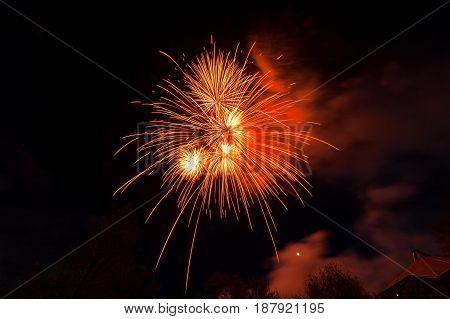 Fireworks light up close-up against dark sky