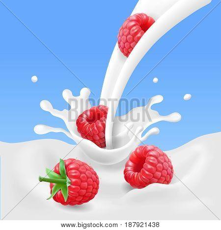 Red raspberry fruits and milk splash. 3d vector illustration.