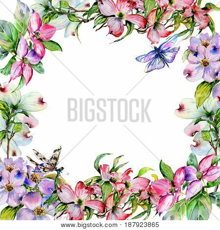 Wildflower dogwood flower frame in a watercolor style isolated. Full name of the plant: dogwood. Aquarelle wild flower for background, texture, wrapper pattern, frame or border.