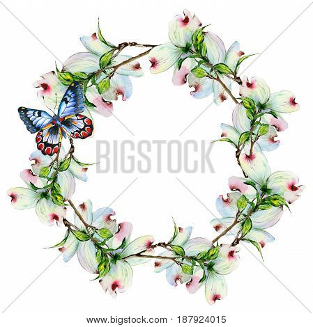 Wildflower dogwood flower wreath in a watercolor style isolated. Full name of the plant: dogwood. Aquarelle wild flower for background, texture, wrapper pattern, frame or border.