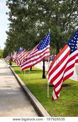 Charleston, SC, USA - 09/10/2016: American flags line the streets around the Citadel in Charleston SC