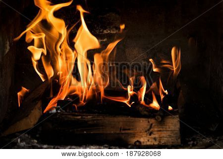 Intense flames and burning trees in the fireplace