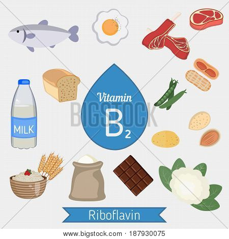 Vitamin B2 Or Riboflavin Infographic