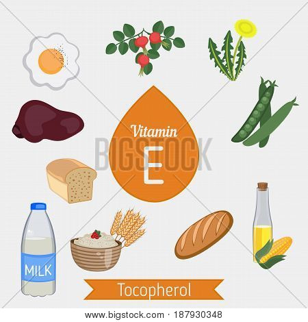 Vitamin E Or Tocopherol Infographic