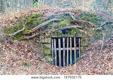 A Small bunker in the middle of the forest