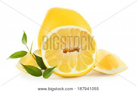 Yellow citrus fruit on white background