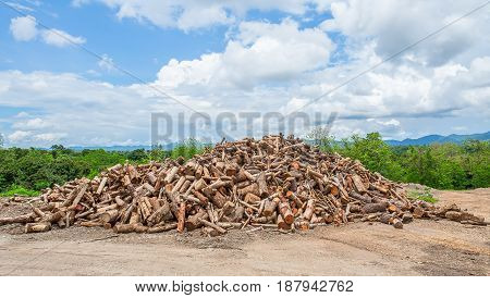 firewood stack in the country garden. Firewood stack