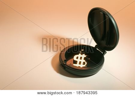 Dollar Symbol in Compact Case on Warm Background