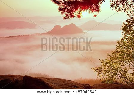 Amazing Place With Red Dreamy Mist In Deep Valley