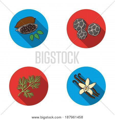 Fried cacao beans, dill, black pepper, vanilla.Herbs and spices set collection icons in flat style vector symbol stock illustration .