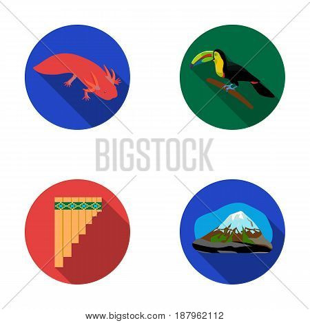 Sampono Mexican musical instrument, a bird with a long beak, Orizaba is the highest mountain in Mexico, axolotl is a rare animal. Mexico country set collection icons in flat style vector symbol stock illustration .