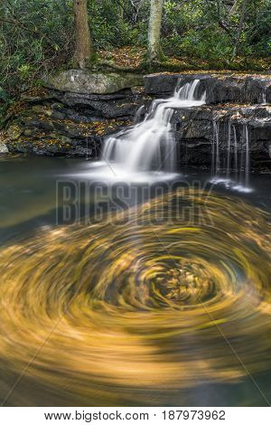 A swirl of floating autumn leaves is captured in a photograph taken with a long exposure at Tolliver Falls in Swallow Falls State Park Maryland.