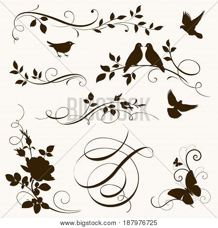 Decorative calligraphic elements. Flowers and birds silhouettes