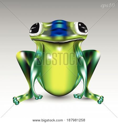 Big green frog Image a reptile big eyes paws animal amphibious fantasy style bright picture