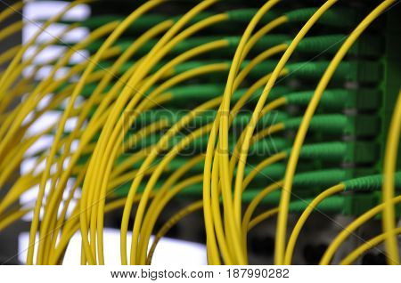 Optical Distribution Frame with Optical Patch Cord Cables Close Up