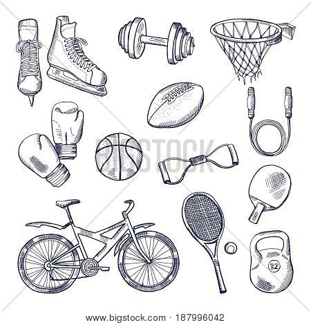 Illustrations of different sports fitness equipment. Vector doodle icons set. Ball and weight bicycle and basketball