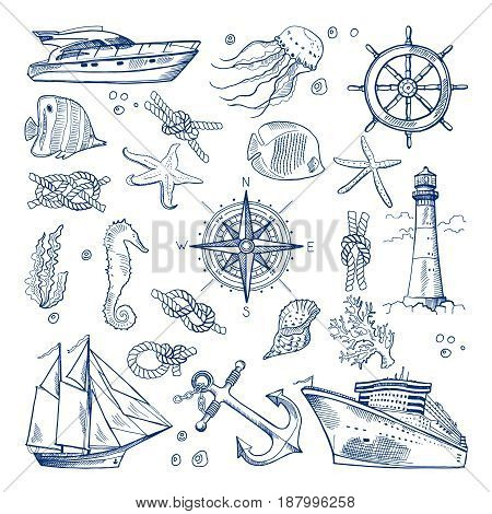 Sea or ocean underwater life with different animals and marine objects. Vector pictures in hand drawn style. Marine life sketch nature animal fish illustration