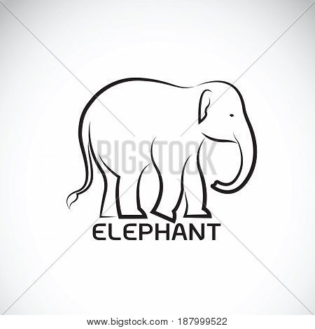 Vector of an elephant on white background. Wild Animal