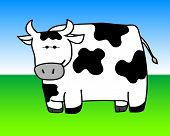 vector illustration of a spotted dairy cow poster