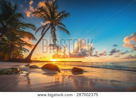 Tropical Beach And Caribbean Sea In Punta Cana, Dominican Republic