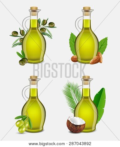 Vector Realistic Argan, Olive, Coconut And Almond Oil Set