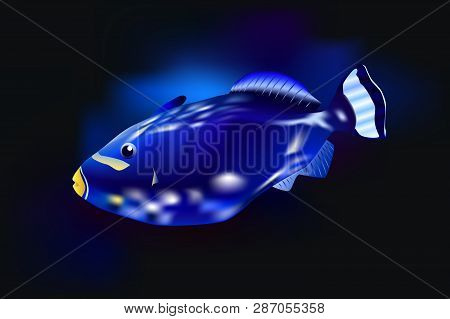 Clown Triggerfish, Vector Illustration Sea Ocean Fish