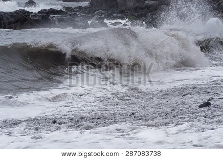 Rolling Waves On Stone Coastline At Stormy Weather. Portuguese Island Of Madeira