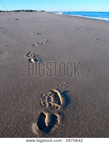Beach Footsteps At Cape Cod
