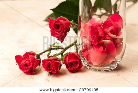 Pétalos de rosa en un vaso