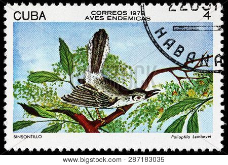 Luga, Russia - February 17, 2019: A Stamp Printed By Cuba Shows Cuban Gnatcatcher - A Species Of Bir
