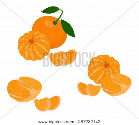 Mandarin, Tangerine, Clementine With Leaves Isolated On White Background. Citrus Fruit. Raster Illus