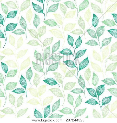 Packaging Tea Leaves Pattern Seamless Vector. Minimal Tea Plant Bush Leaves Floral Textile Design. H