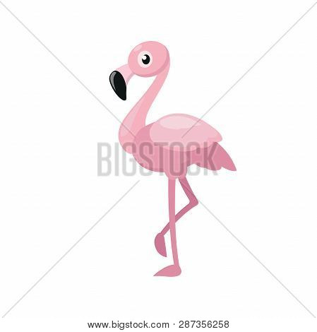 Illustration Of A Pink Flamingo On A White Background