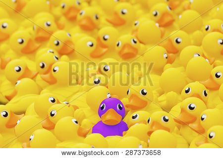 Unique Purple Toy Duck Among Many Yellow Ones. Standing Out From Crowd, Individuality And Difference