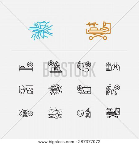 Medicine Icons Set. Angiology And Medicine Icons With Pathology, Pulmonology And Intensive Care Medi