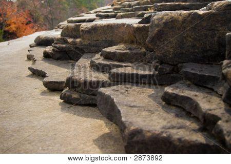 Rock Shelf