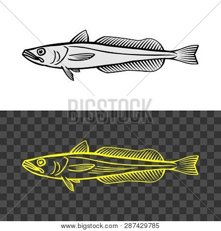 Hake Fish Common Illustration. Cape Hake Logo.