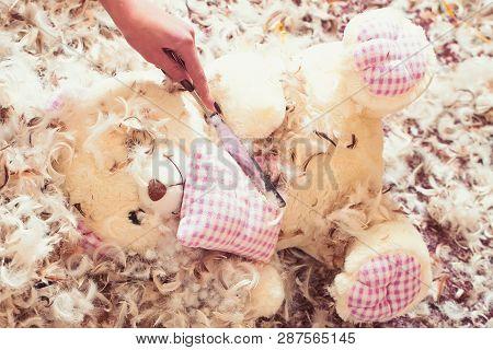 Hand Rip Teddy Bear With Knife. Cute Animal Doll In Feather Snowflakes. Teddy Bear Toy On Feather Ba