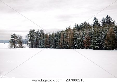 Winter Scenery With Forrest And Snow Field