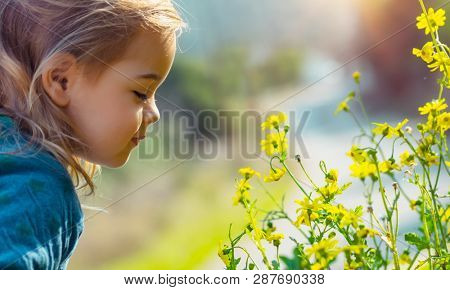 Profile portrait of a sweet little baby enjoying flowers aroma, having fun in spring park, beauty and freshness of small yellow wildflowers
