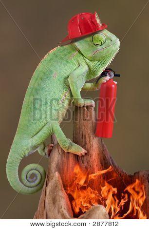 Chameleon Firefighter