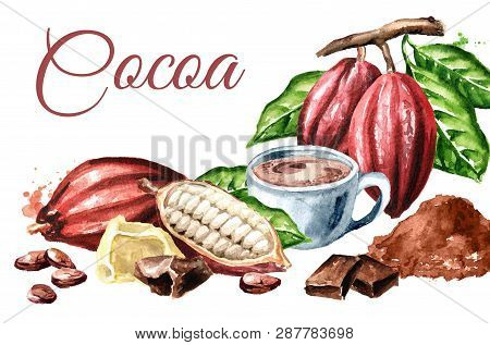 Cocoa Products Card. Beans, Pods, Chocolate, Butter, Hot Cocoa Drink. Superfood. Watercolor Hand Dra