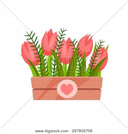 Cute Pink Tulips With Green Leaves In Wooden Box. Natural Composition. Spring Flowers. Nature Theme.