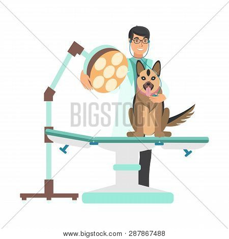 Veterinarian With Dog In Vet Clinic Illustration. Vet Doctor Examines Alsatian Dog On Examining Tabl
