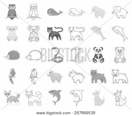 An Unrealistic Animal Monochrome, Outline Icons In Set Collection For Design. Toy Animals Vector Sym