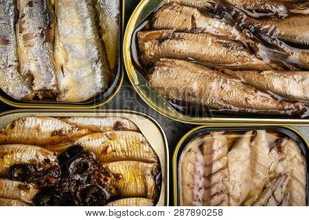 Canned Fish In A Tin